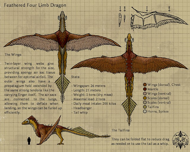 Feathered dragon refsheet