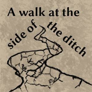 A walk at the side of the ditch