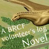 A BRCF volunteer's log